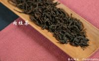 武夷肉桂茶和大红袍茶叶的区别