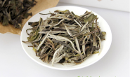 白牡丹茶属于什么茶?