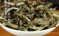 福鼎白茶散茶和茶饼的区别_白茶茶饼好还是散茶好?