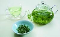 碧螺春属于什么茶?