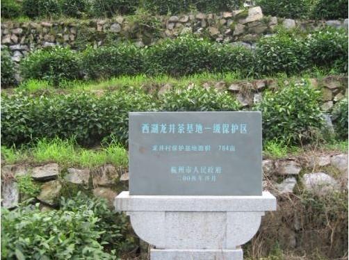 西湖龙井龙井产区